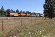 Crozier_Canyon_to_Canyon_Diablo_2012/BNSF7534atWilliamsJCTAZ_2.jpg